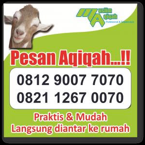 Layanan jasa Jual Kambing Aqiqah di Tangerang Selatan